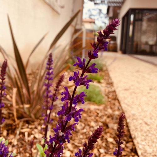 jardin-8-mosaique